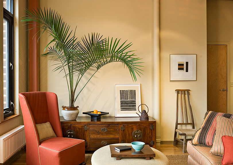 Condo-LR-detail-with-plant-